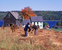 Village historique de Kings Landing - la fenaison; Province of New Brunswick - image 548