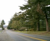 View of Avenue of Trees, 2004.; Ciity of Surrey 2004