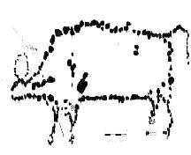Plan drawing of bison effigy, including rocks that represent internal organs..; Government of Saskatchewan, 1964.