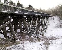 View of the Mill Creek Trestle Bridge looking west across the Mill Creek Ravine (January 2005); City of Edmonton, 2005